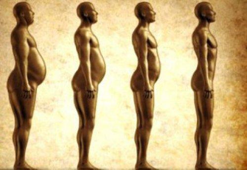 сбросить вес на правильном питании меню