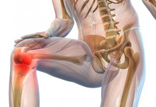 Лечение желатином доа коленного сустава слишко чильно гнутся сустава